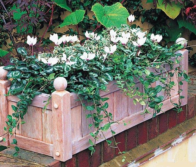 цветочные ящики основные разновидности цветочной тары